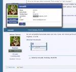Exemplu de afisare butonare Find Content si Send Message.jpg