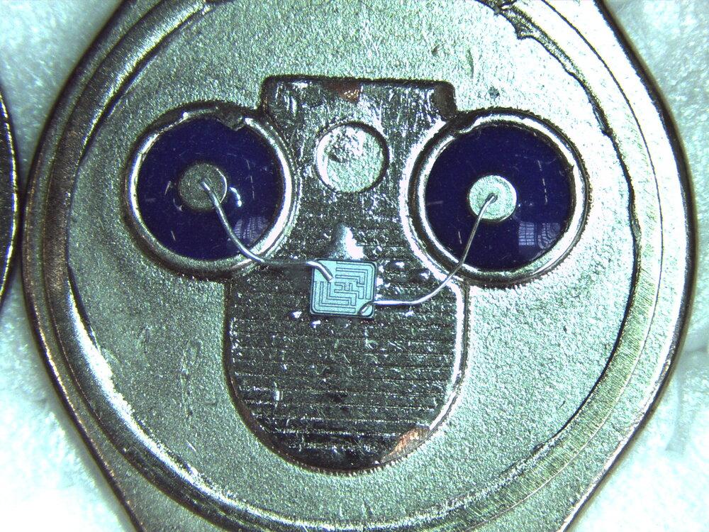 IC800056.JPG
